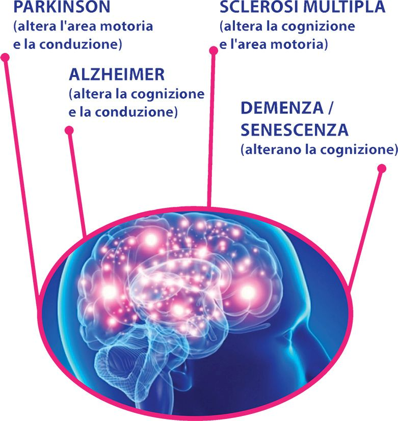 PaQual in Neurologia